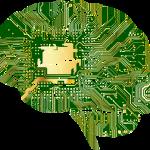 neuro diseño web y los 3 cerebros