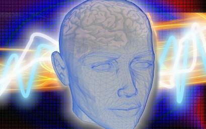 Hipocampo: memoria, emociones y aprendizaje