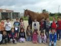 cavalls-14