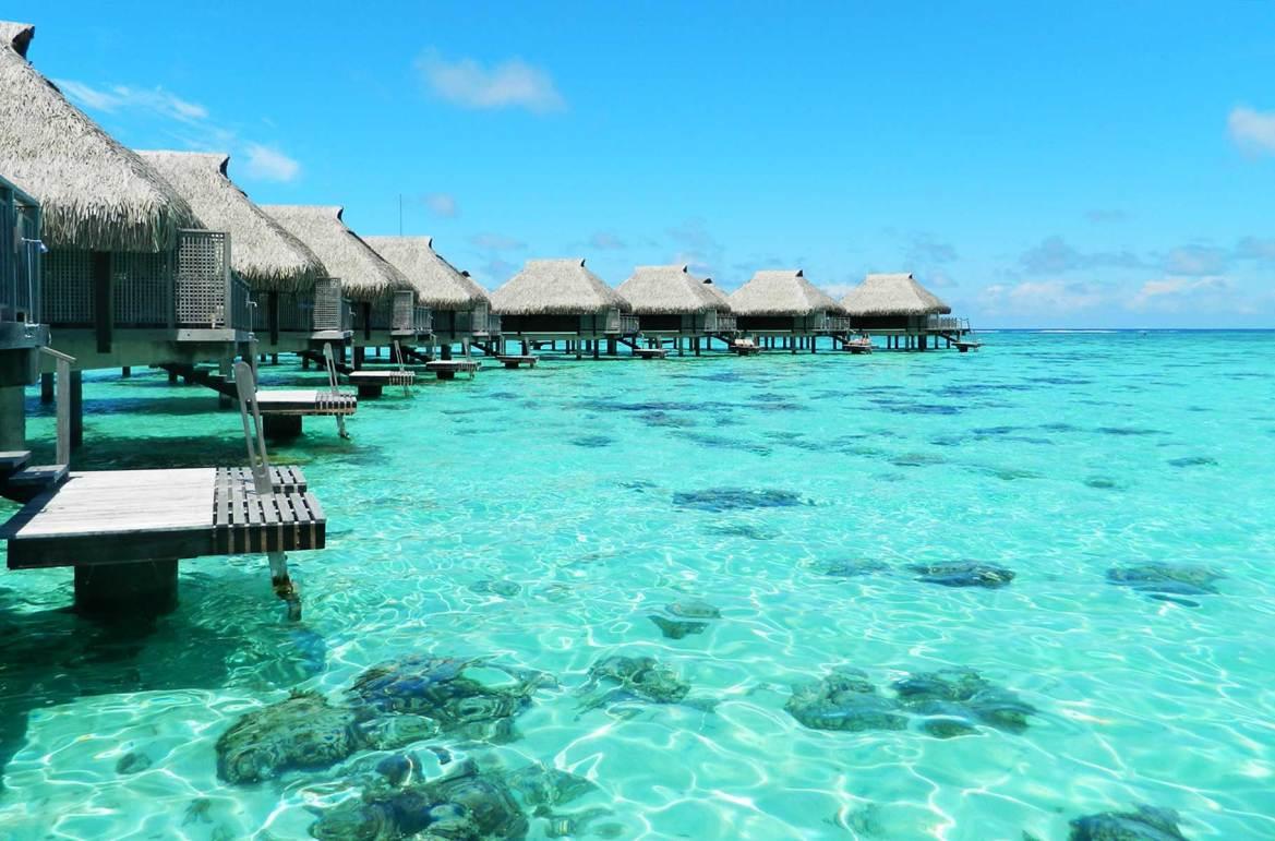 Fotos de viagem - Ilha de Moorea (Polinésia Francesa)