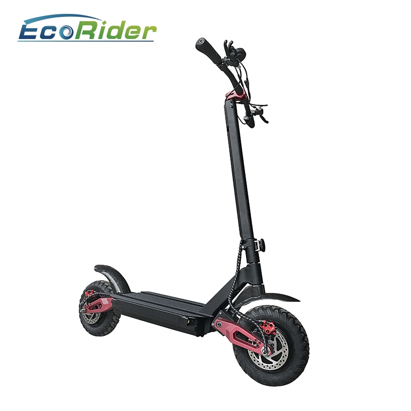 EcoRider 10-inch twin-engine electric scooter E4-9, adult
