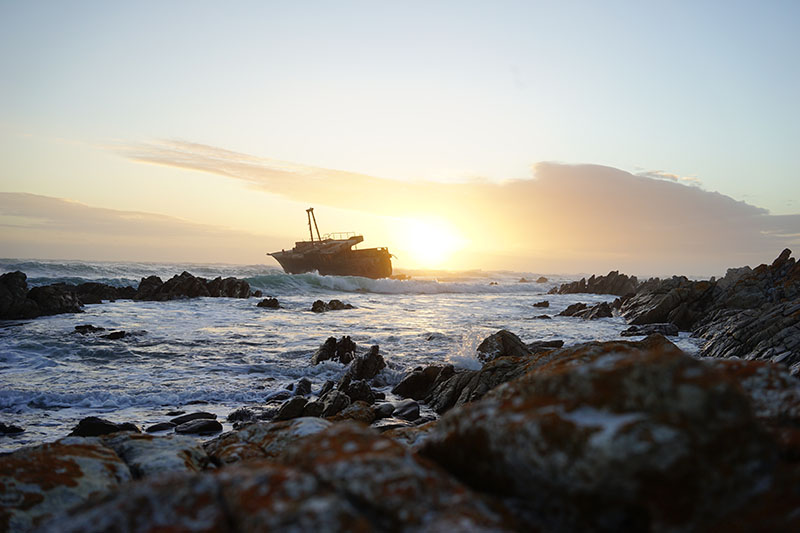 ship wreck in cape town affordable african safari luxury african safari tours african safari tours tripadvisor african safari vacations all inclusive african safari tours cost african safari holidays 2019 best african safari for seniors private african safari tours