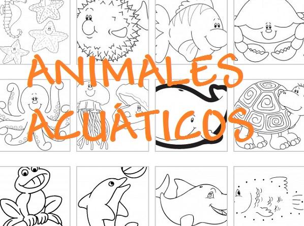 Animales Acuaticos Para Colorear