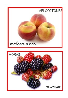 Frutas variadas_006