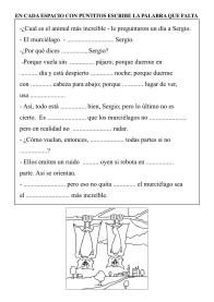 EL MURCIÉLAGO-2