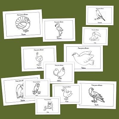 Dibujos para colorear: Aves