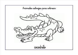 cocodrilo colorear