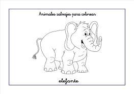 elefante colorear