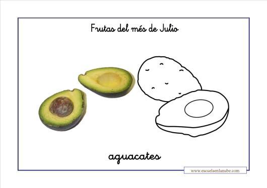 frutas_aguacate