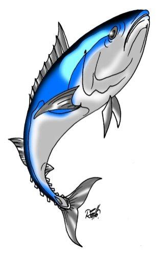 animales marinos 04