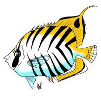 animales marinos 05