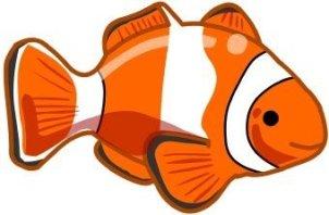 animales marinos 09