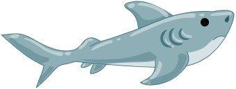 animales marinos 10