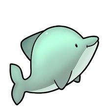 animales marinos 18