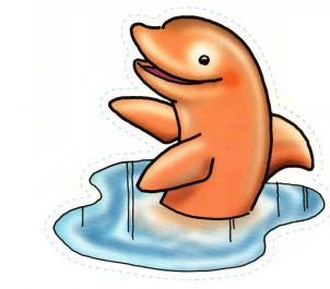 animales marinos 31