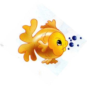 animales marinos 41