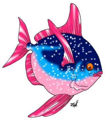 animales marinos 42