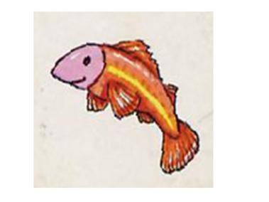 animales marinos 44