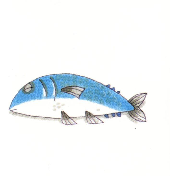 animales marinos 49