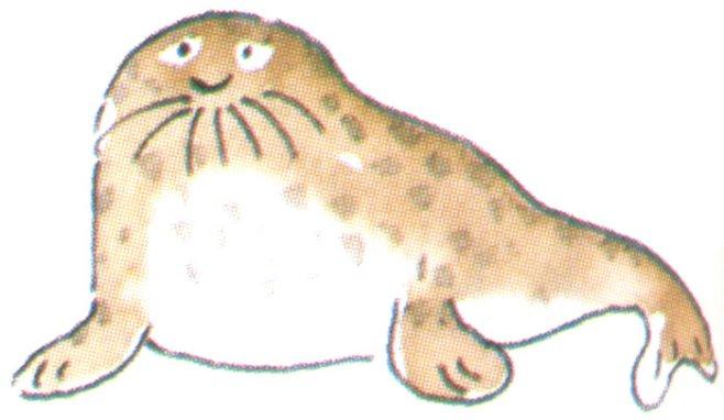 animales marinos28