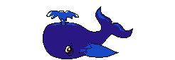 animales marinos34
