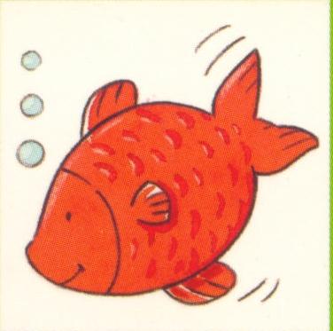 animales marinos44