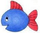 animales marinos53