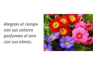 adivinanzas_015