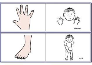 el lenguaje de signos_017