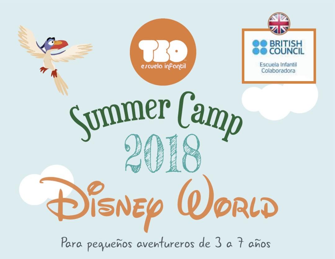 Summer camp 2018 en TEO