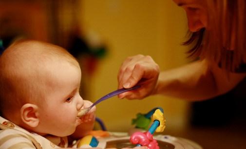 Ingredientes de alimentos para bebés