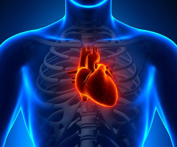 heart6001
