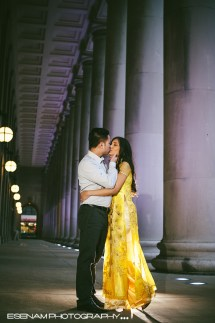 Chicago Engagement Pinky & Donny - Indian Wedding