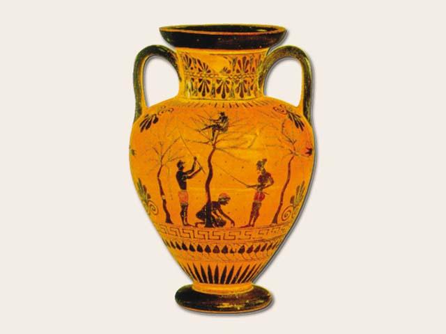 El Olivo hasta la civilizacin Griega  Esencia de Olivo