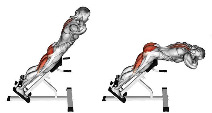 roman chair alternative elegant covers and event decor iperestensioni a terra o sulla panca per i muscoli lombari