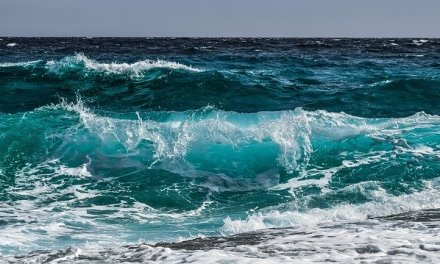 BNPP AM Launches Blue Economy ETF Focused on Ocean Sustainability