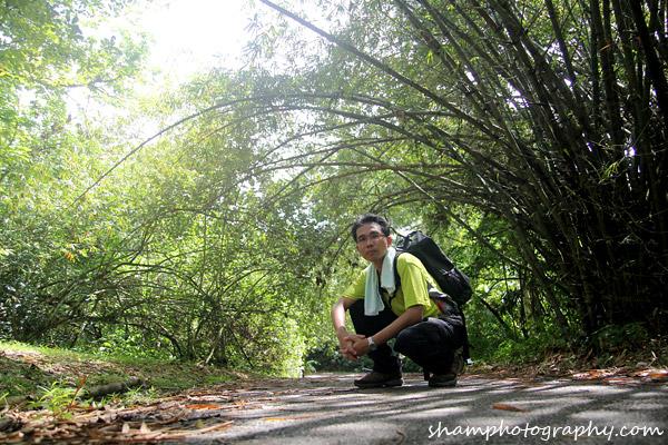frim-kepong-hutan-simpan-bukit-lagong-alamsemulajadi-nature-hiking-15
