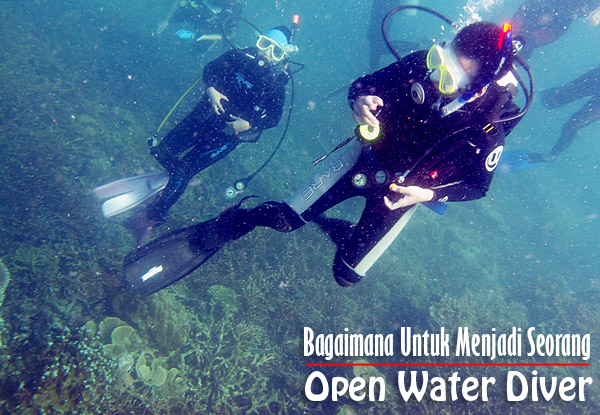 bagaimana-untuk-menjadi-seorang-open-water-diver-lesen-menyelam-ambil-lesen-padi-naui-sdi-diving-shamphotography