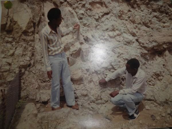 Excursion - Mine Fossils Identification1