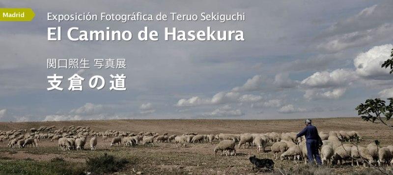 15julio2014_sekiguchi_top