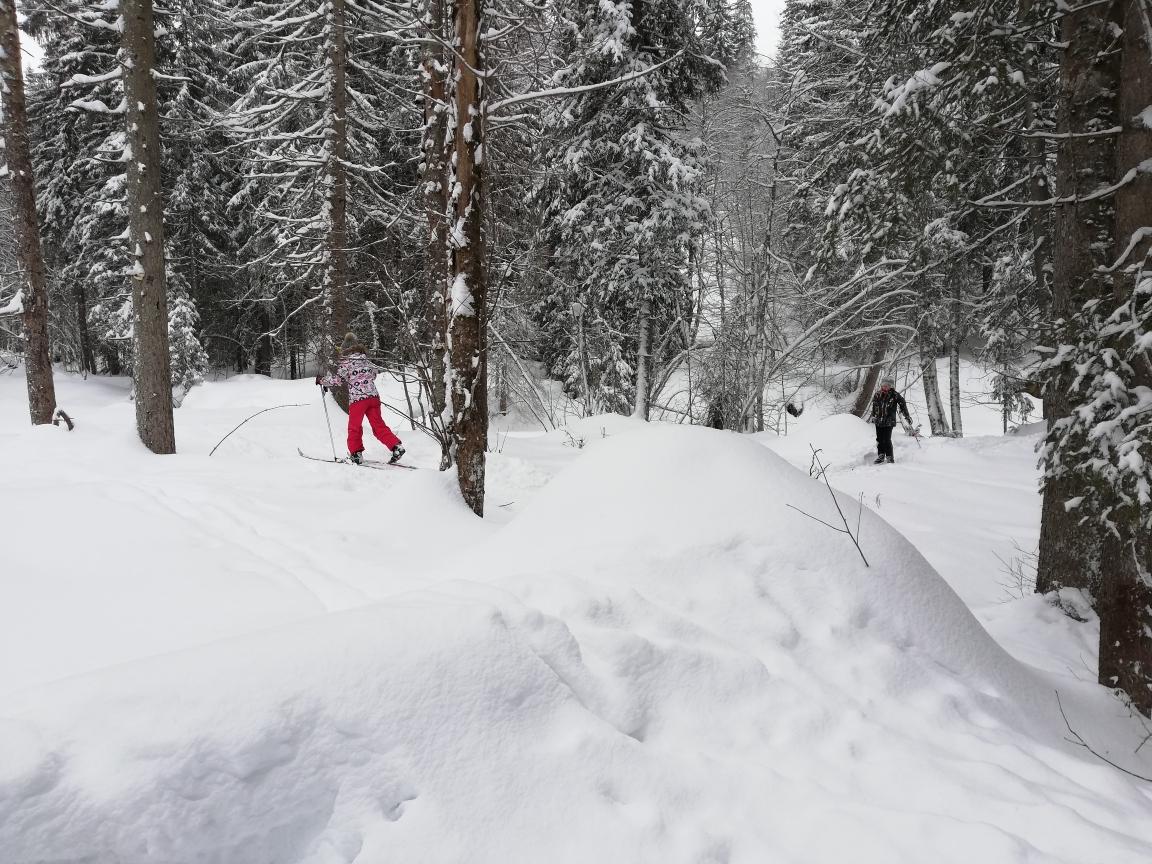 Classe 7 ski de fond dans les bois et la poudreuse🎿⛷️😁