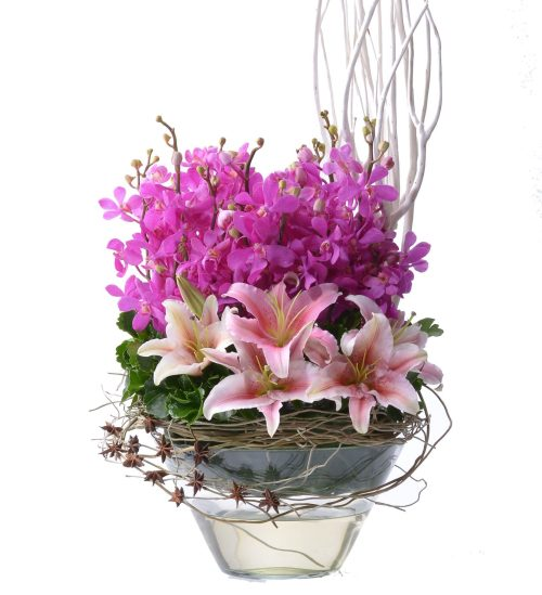 Blushing Pinks Mokaras Orchids Arrangement | Flowers In Vase | Eska Creative Gifting