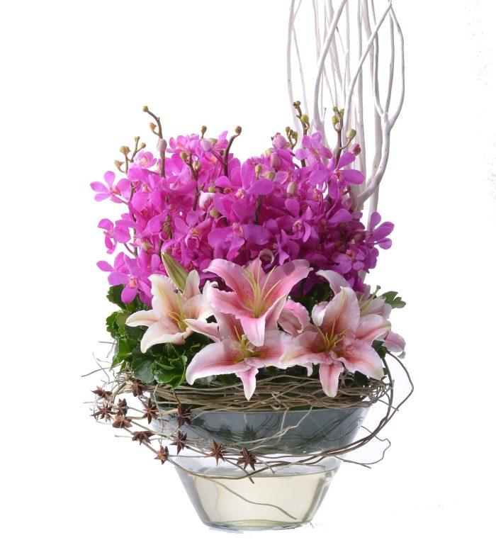 Blushing Pinks Mokaras Orchids Arrangement | Flowers In Vase | Eska Creative Gifting