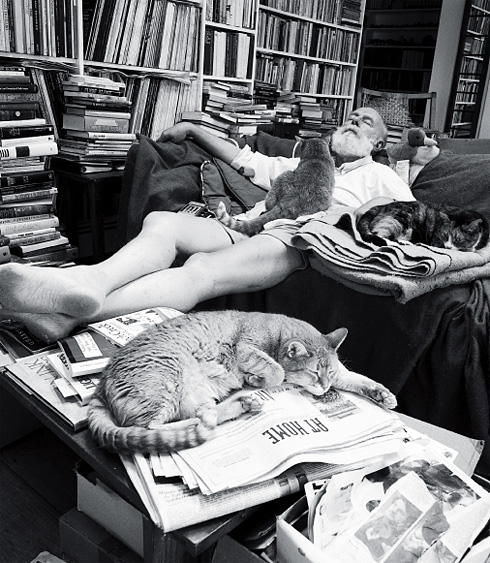 edward-gorey-cats-2
