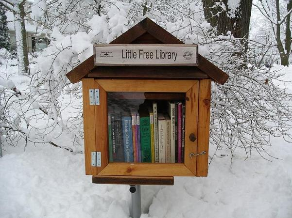 Kucuk-minik-kutuphane-Little-Free-Library-2