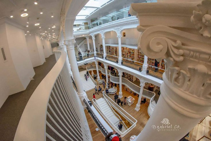 carousel-of-light-library-bucharest-bookstore-9