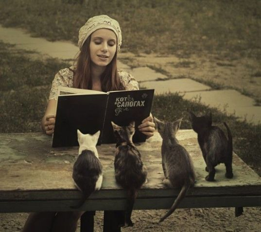 reading-book-and-cats-listening