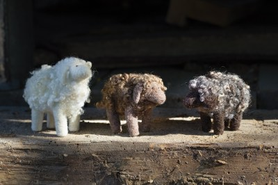 200960-Sheep