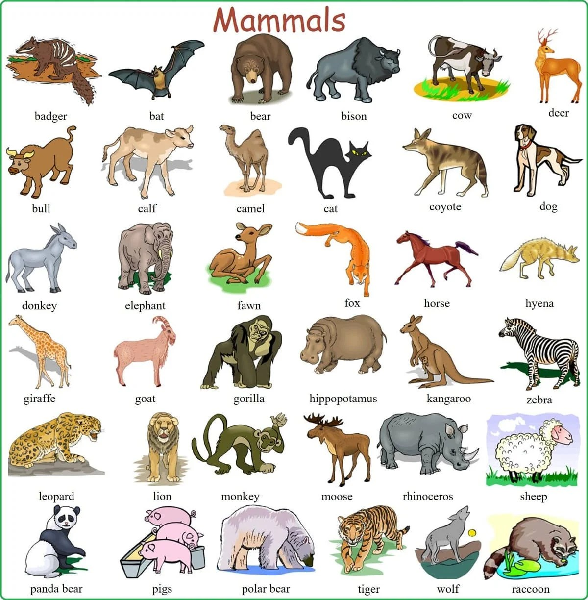 Learn English Vocabulary through Pictures: 100+ Animals ...