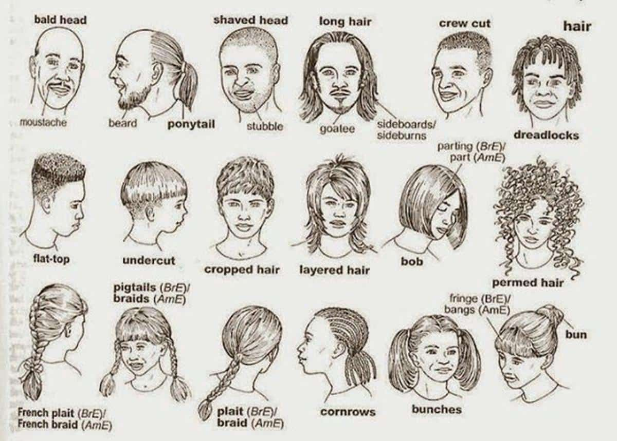 English Vocabulary Hairstyles